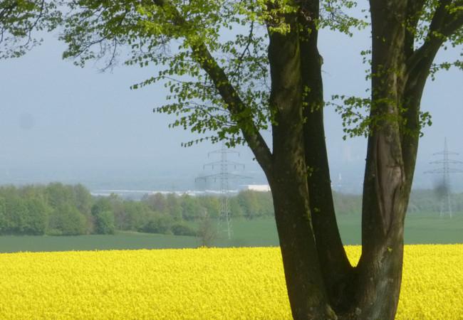 Landschaft Fröndenberg
